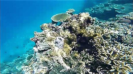 El Nido Unterwasser