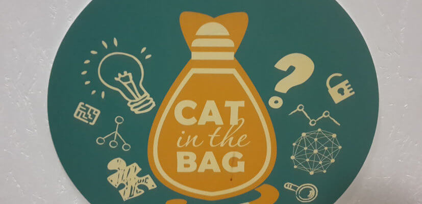 EscapeGame Cat in the Bag Berlin