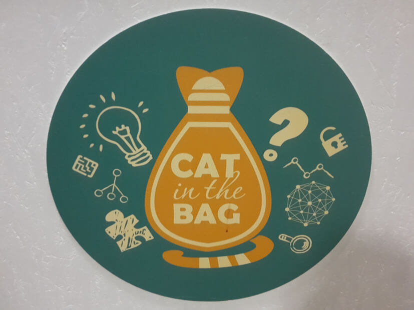 Escape Room Cat in the Bag