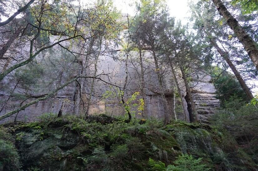 Felsenschlucht sächsische Schweiz