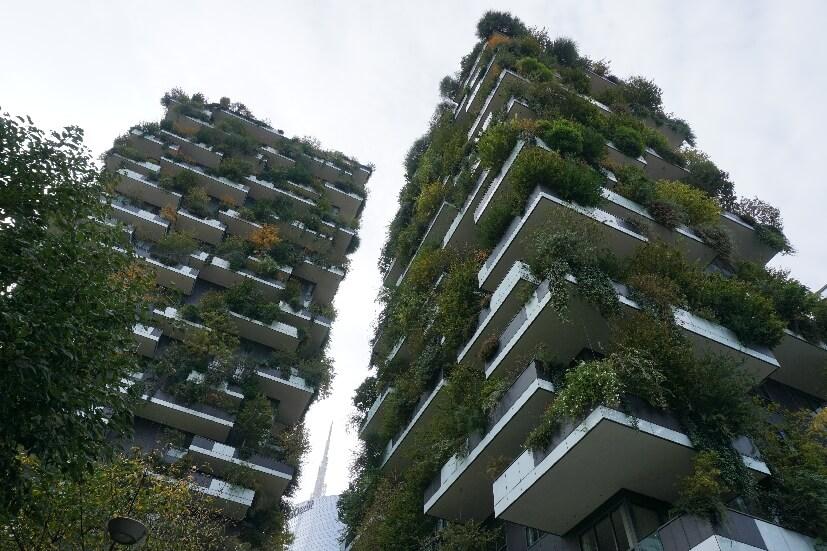 vertikaler Wald