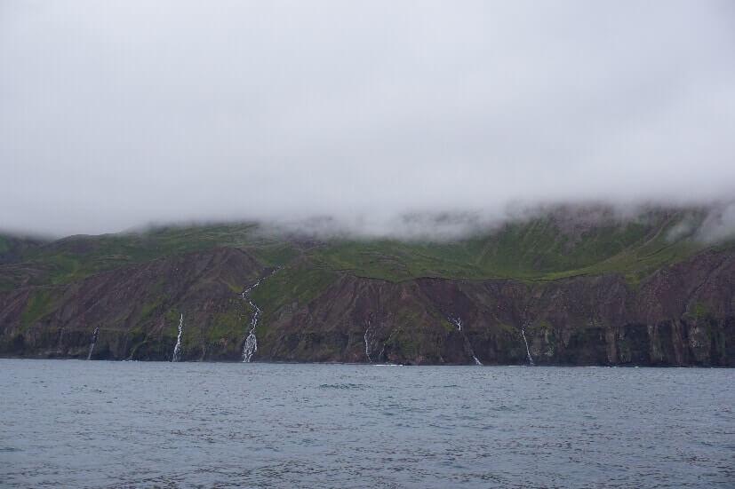 Vik Gebirge - Walbeobachtung in Island