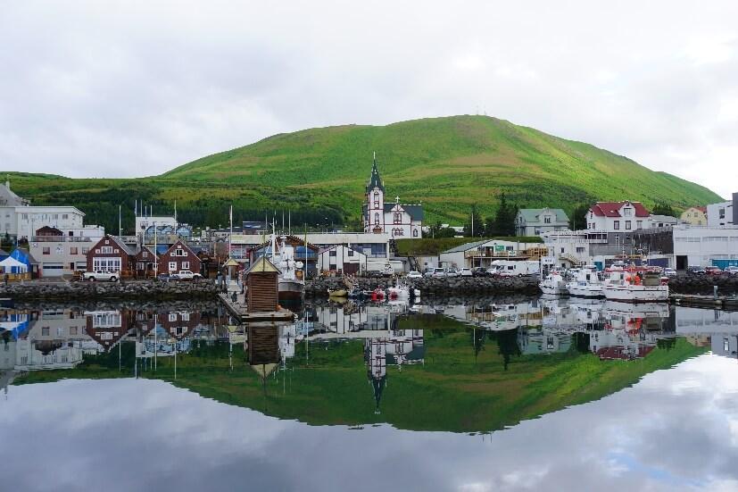 Walbeobachtung in Island ab Husavik