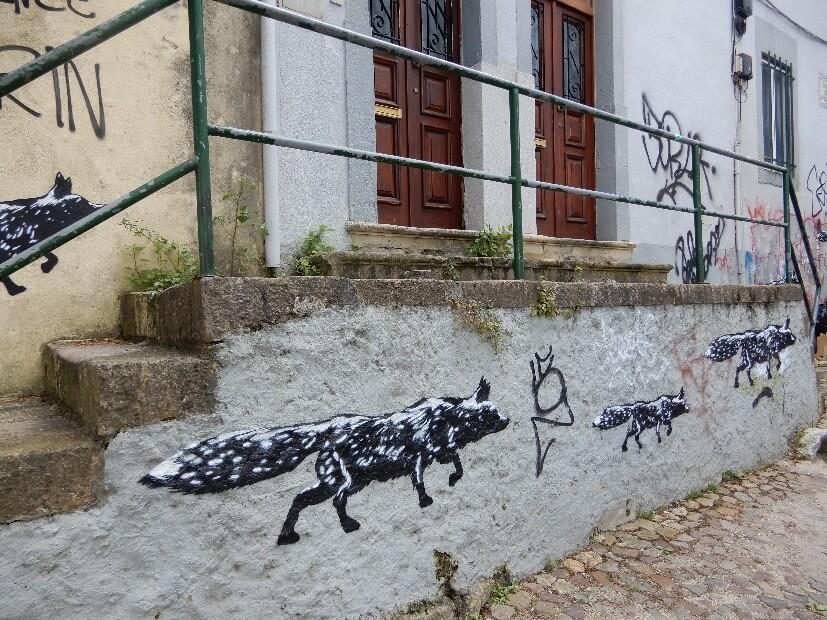 Streetart Coimbra