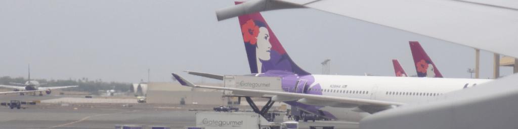 Flugzeug- günstige Flüge finden