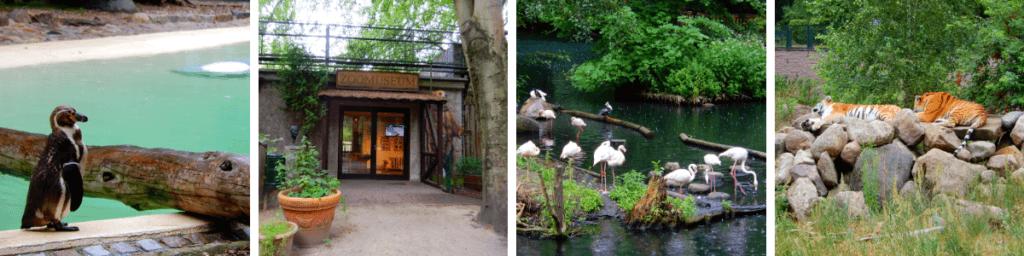 Zoo Eberswalde Ausflugstipps Brandenburg