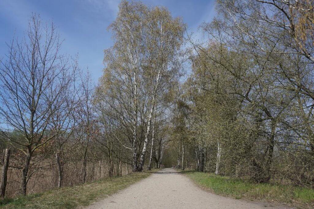 Wege durch das Naturschutzgebiet