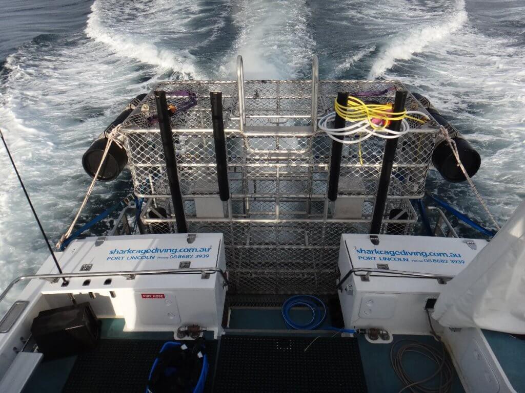 Käfig für taucehn mit weißen Haien
