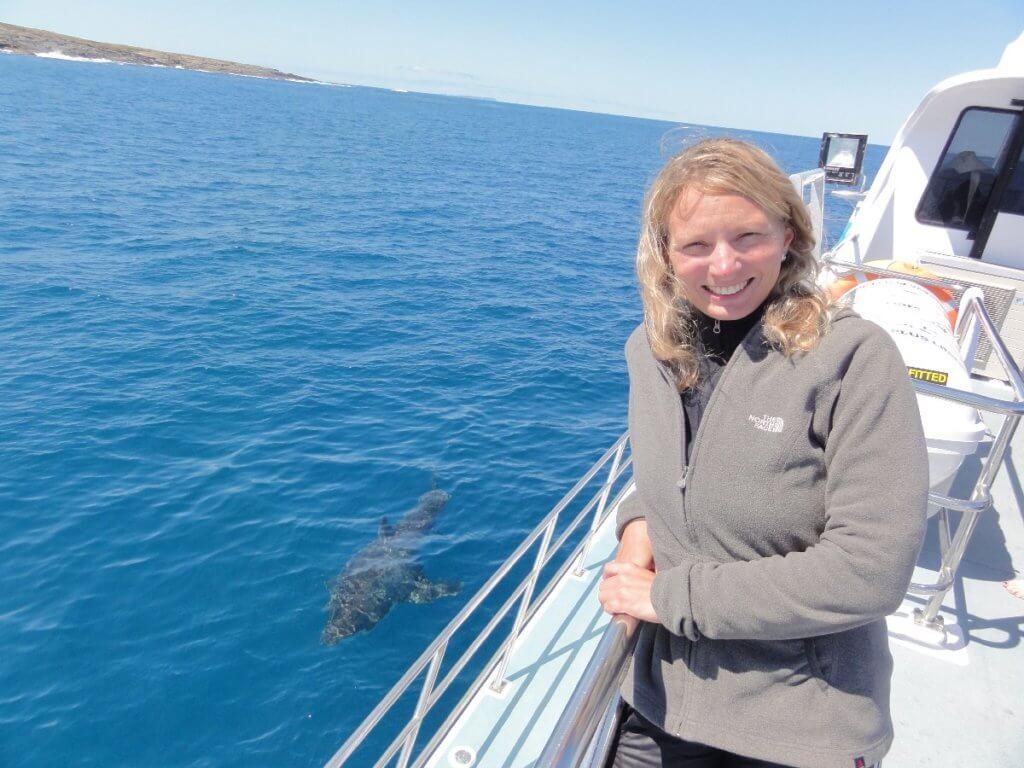 weißer Hai umkreist Boot