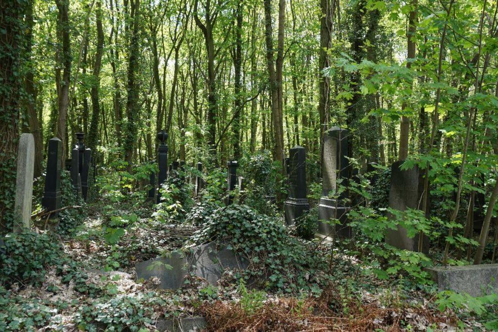 Grüber jüdischer Friedhof