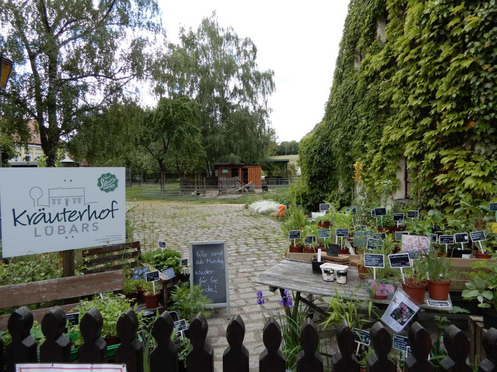 Kräutergarten Lübars