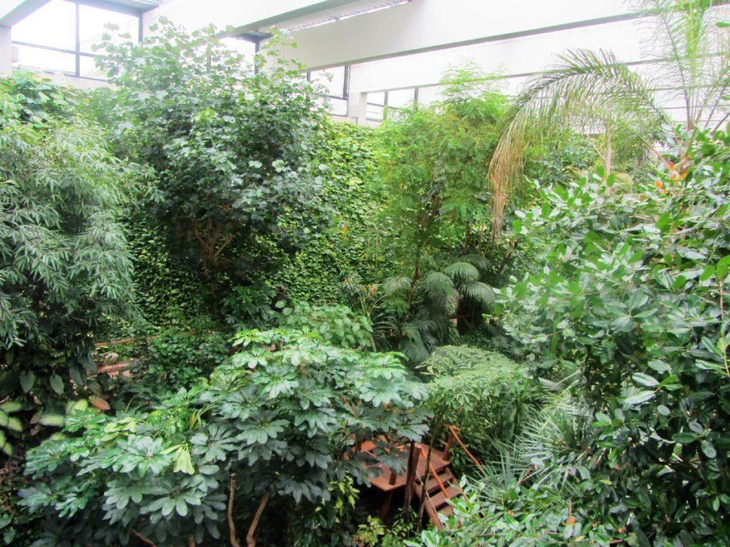 Tropenhalle Biosphäre Potsdam
