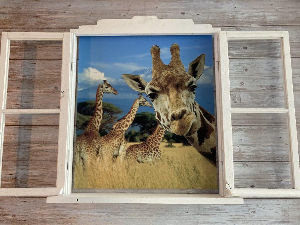 Giraffe am Fenster Studio of Wonders Berlin