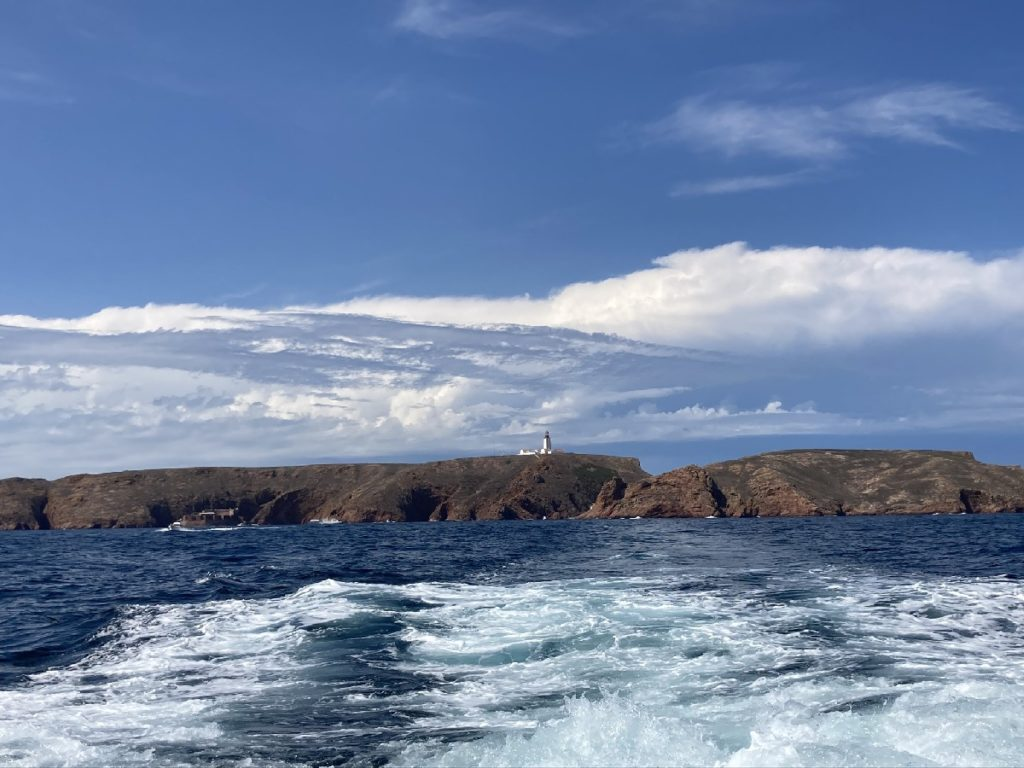 Berlengas Insel
