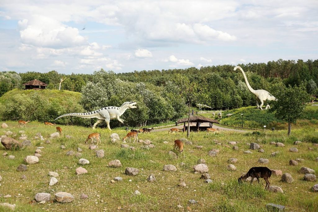 Wild im Dinpark Germendorf