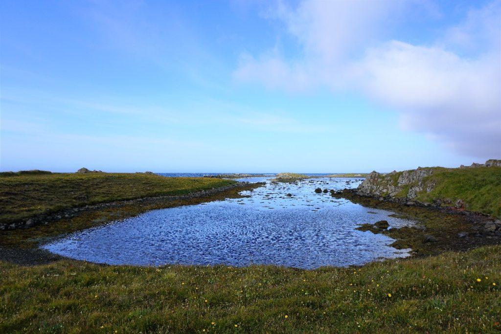 Robben Vatsnes Halbinsel