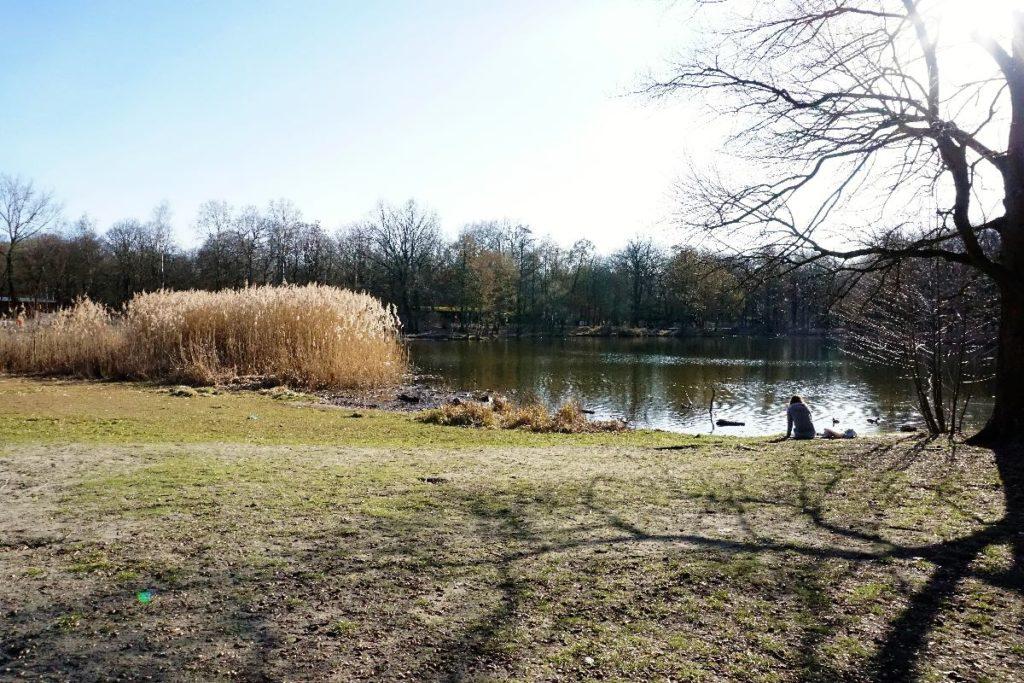 Jungfernheide Volkspark als Picknick Ort in Berlin