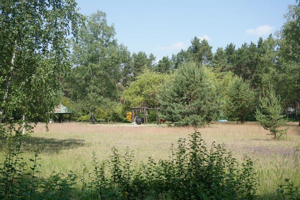 Ossi Camp