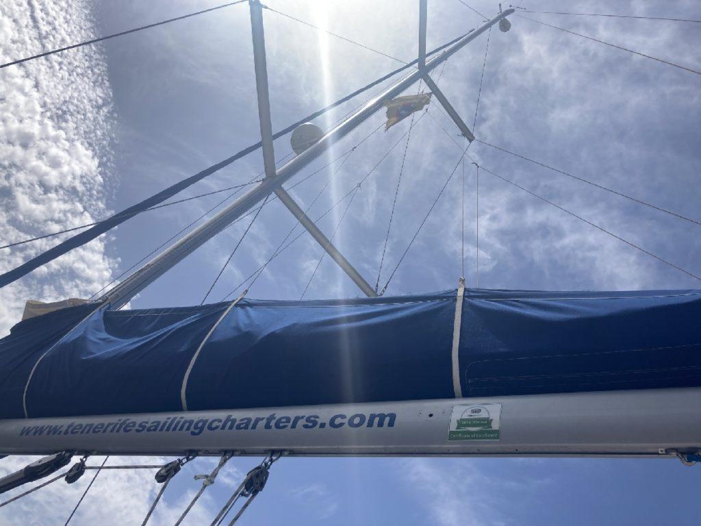 Wale beobachten Segelboot Teneriffa